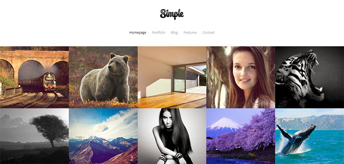 Simple WordPress Theme – Portfolio Theme