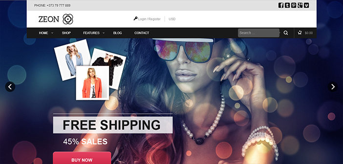 Zeon WordPress Theme – eCommerce Theme