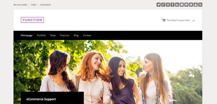 Function WordPress Theme – WooCommerce WordPress Theme
