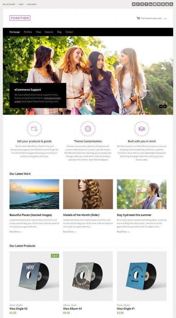 Function-WordPress-Theme