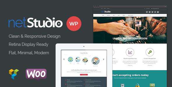 Netstudio WordPress Theme