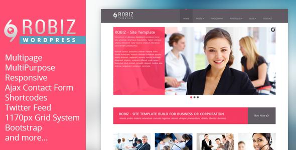 ROBIZ WordPress Theme