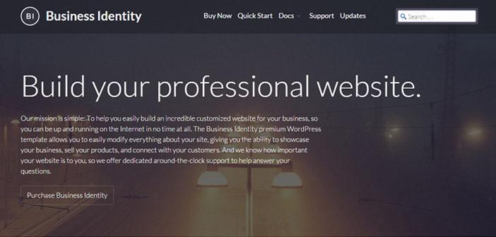 Business Identity – A Proffesional WordPress Theme