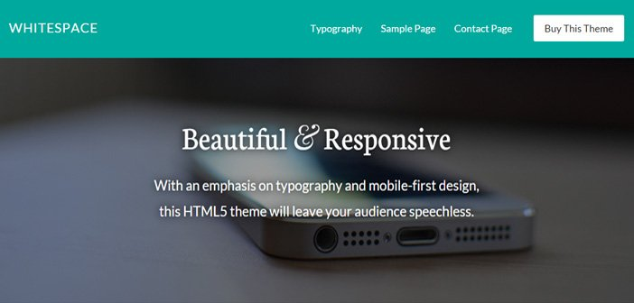 Whitespace Pro – Beautiful Content Friendly WordPress Theme