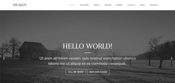 Awaken – A Clean & Trendy Multipurpose WordPress Theme