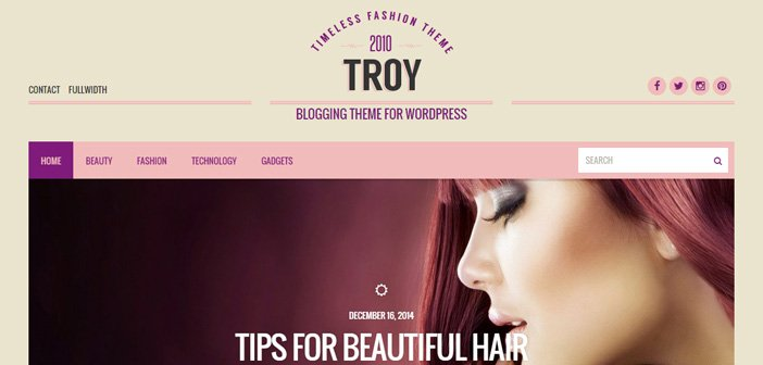 Troy – A Superb Blogging WordPress Theme
