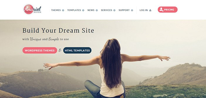 Best Premium WordPress Themes From Anariel Design