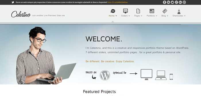Celestino - Portfolio WordPress Theme