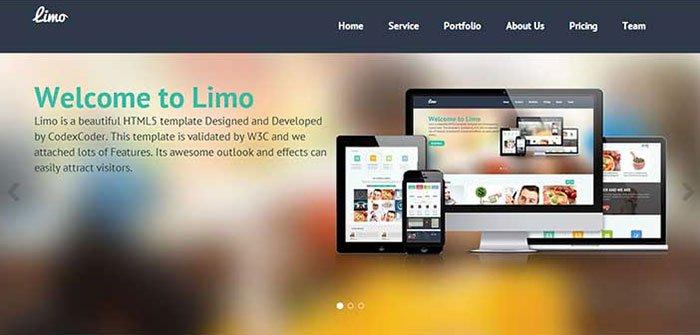 Limo WordPress Theme