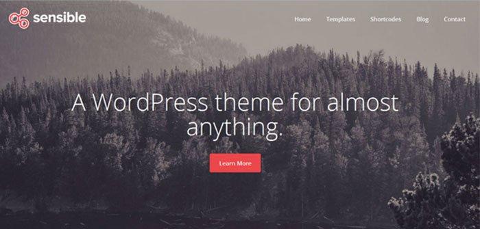 Sensible Multipurpose WordPress Theme