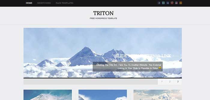 Triton Lite - Blog WordPress Theme