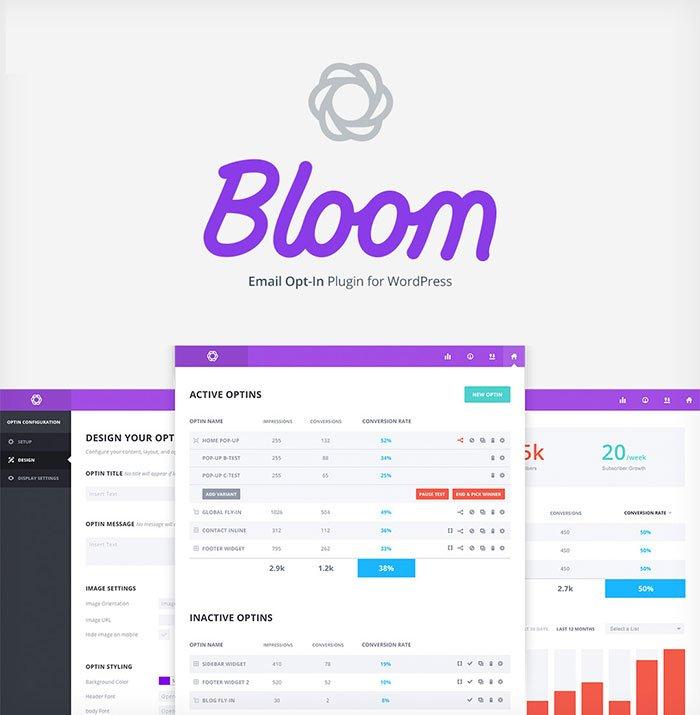 bloom dashboard