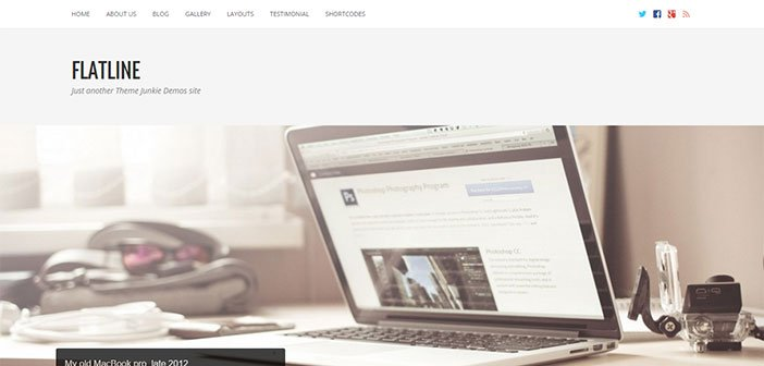 FlatLine – A Responsive Business WordPress Theme