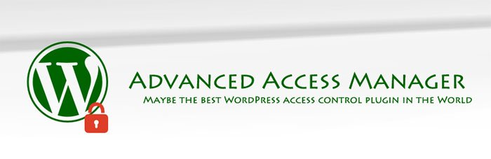 Restrict User Access to WordPress Site?Try These Plugins