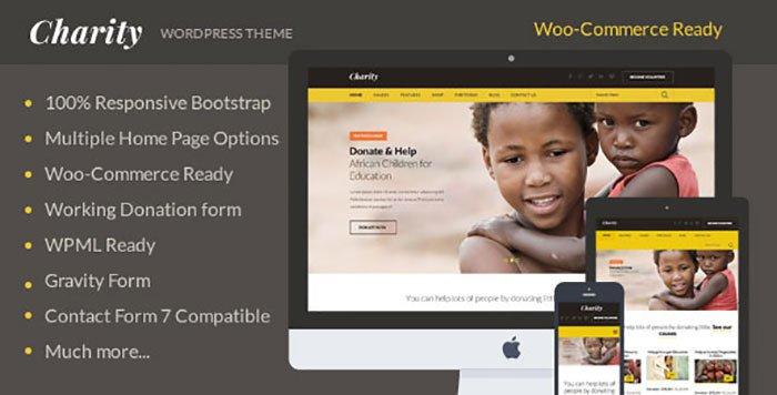 Charity Nonprofit NGO Fundraising WordPress Theme