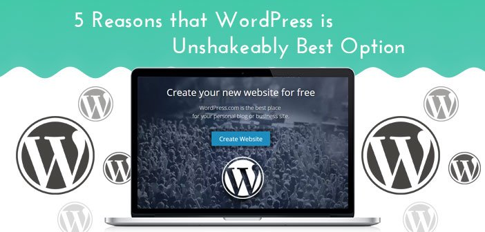 5 Reasons that WordPress is Unshakeably Best Option