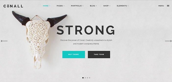 Conall – A Clean & Beautiful Multipurpose WordPress Theme