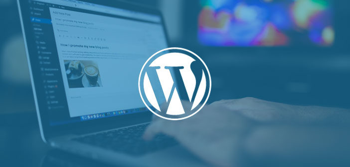 30 Brilliant WordPress Tutorials for Beginner