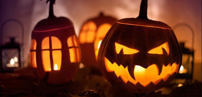 Halloween Offer – Best WordPress Deals and Coupons Roundup 2016