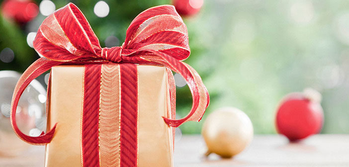 Christmas Delights – The Best WordPress Deals For New Year 2017
