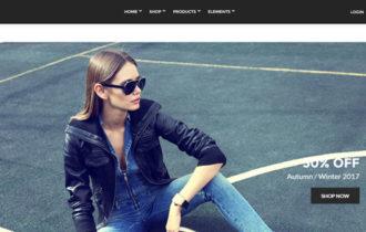 Neto – The Best and Beautiful eCommerce WordPress Theme
