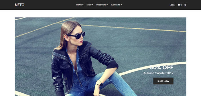 Neto – The Best and Beautiful eCommerce WordPress Theme