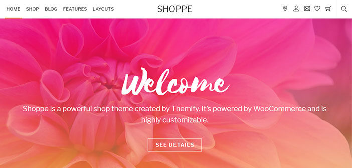 Shoppe – A Beautiful Multipurpose WooCommerce WordPress Theme