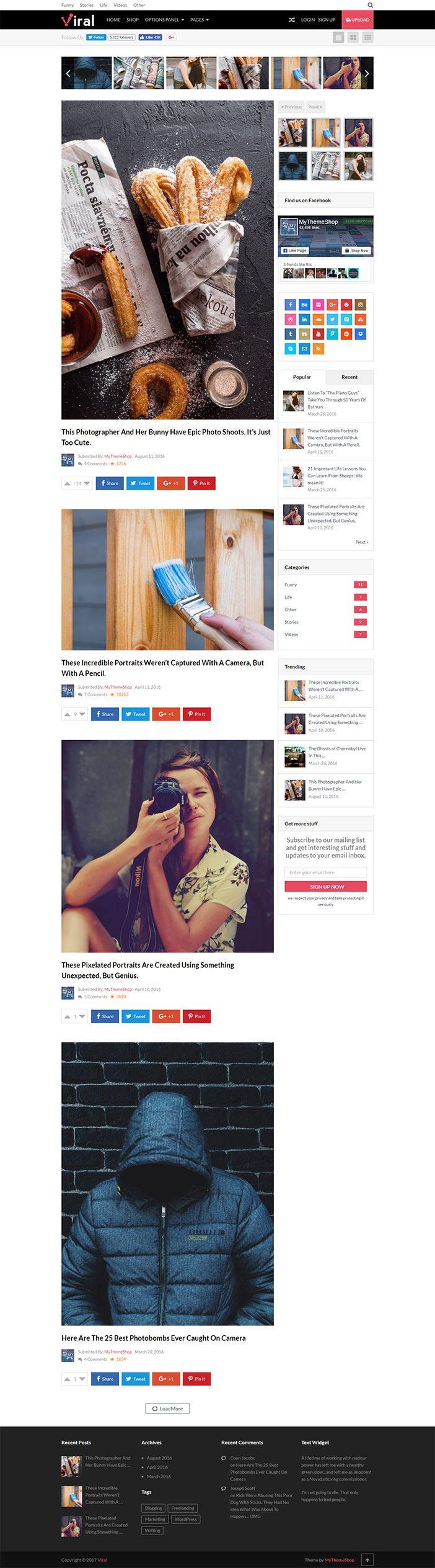 The Viral WordPress Theme