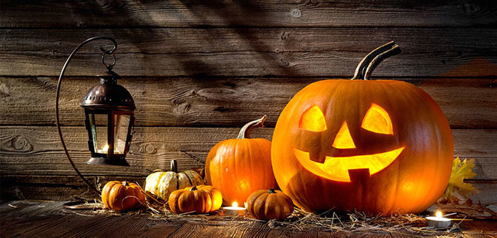 Best Halloween WordPress Deals 2017 – Amazing Discounts and Coupons