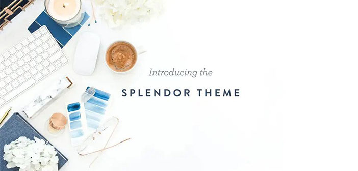 Splendor – A Feminine WordPress Theme built for bloggers